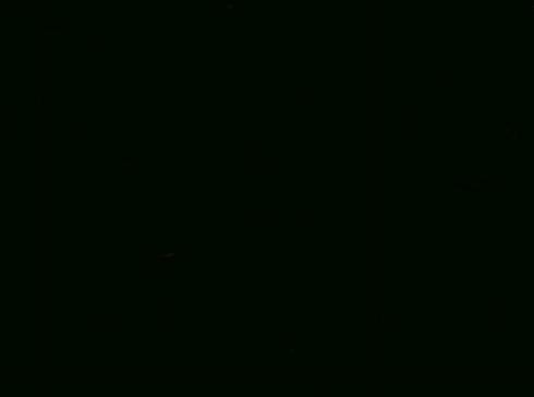 Pratelná jednobarevná žinylka PULS 889 černá