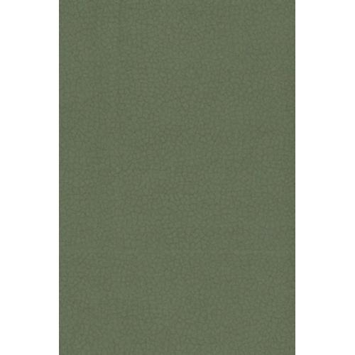 Potahová látka CARABU 110 tmavě šedá