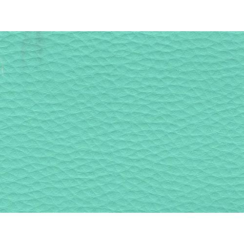 Koženka mintová DOLARO 54